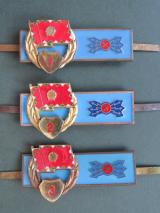 Hungary Pre 1991 Army Signals Technician Badges 1st, 2nd & 3rd Classes