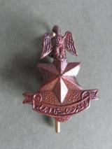Nigeria Army Officer's Collar Badge